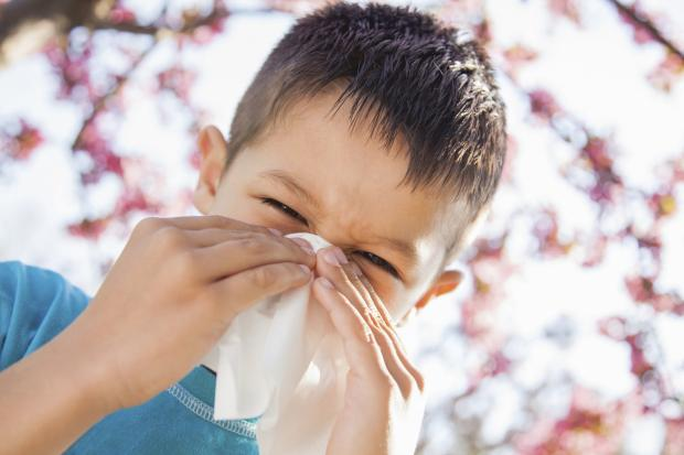 Border Telegraph: COUGHS AND SNEEZES Children remain infectious with flu for much longer than adults