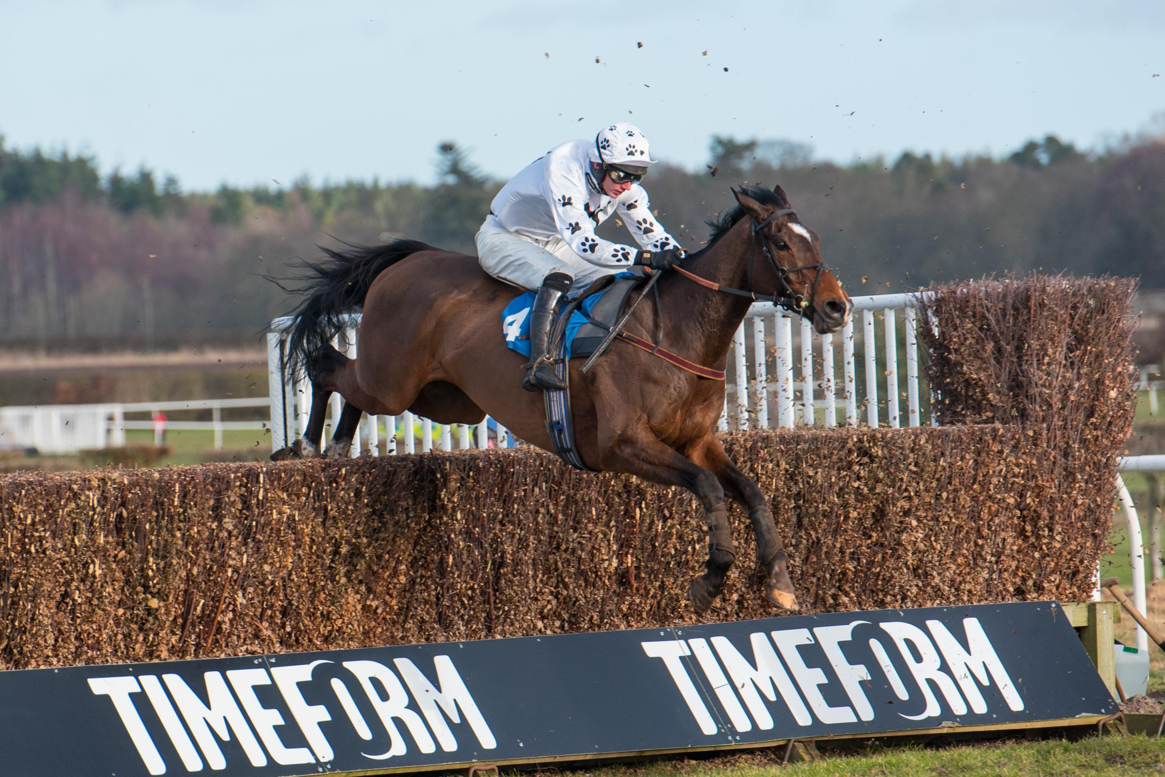 Emotional Morebattle Hurdle win for trainer Ruth