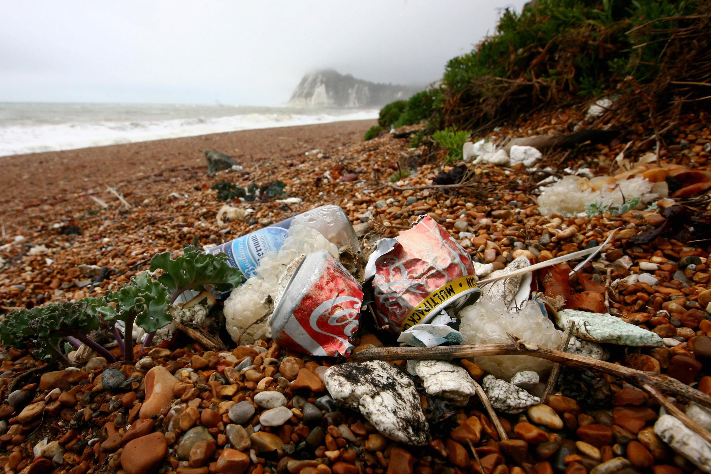 The public are being urged to help clean up British beaches from their sofa (Gareth Fuller/PA)