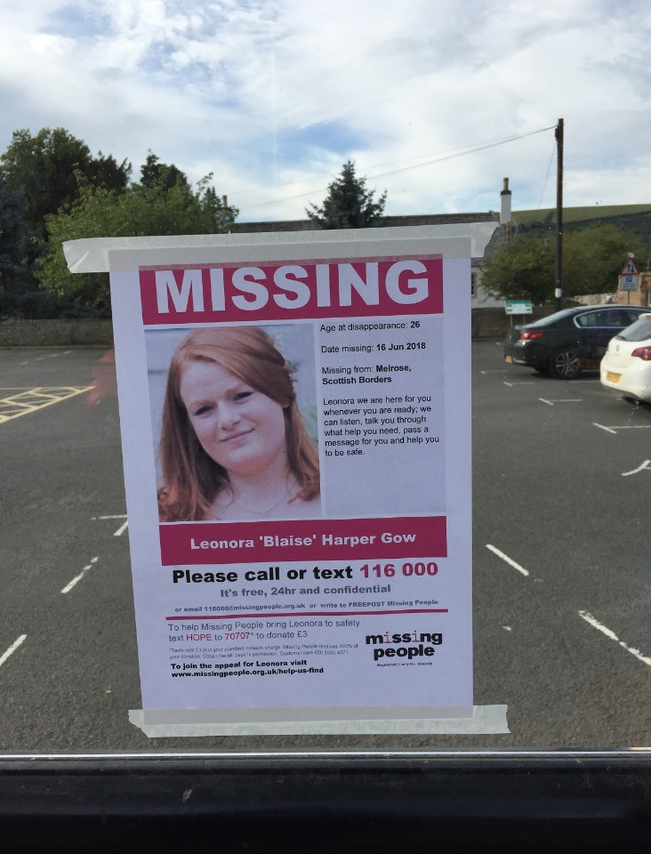 Posters were placed all around Melrose after Leona went missing