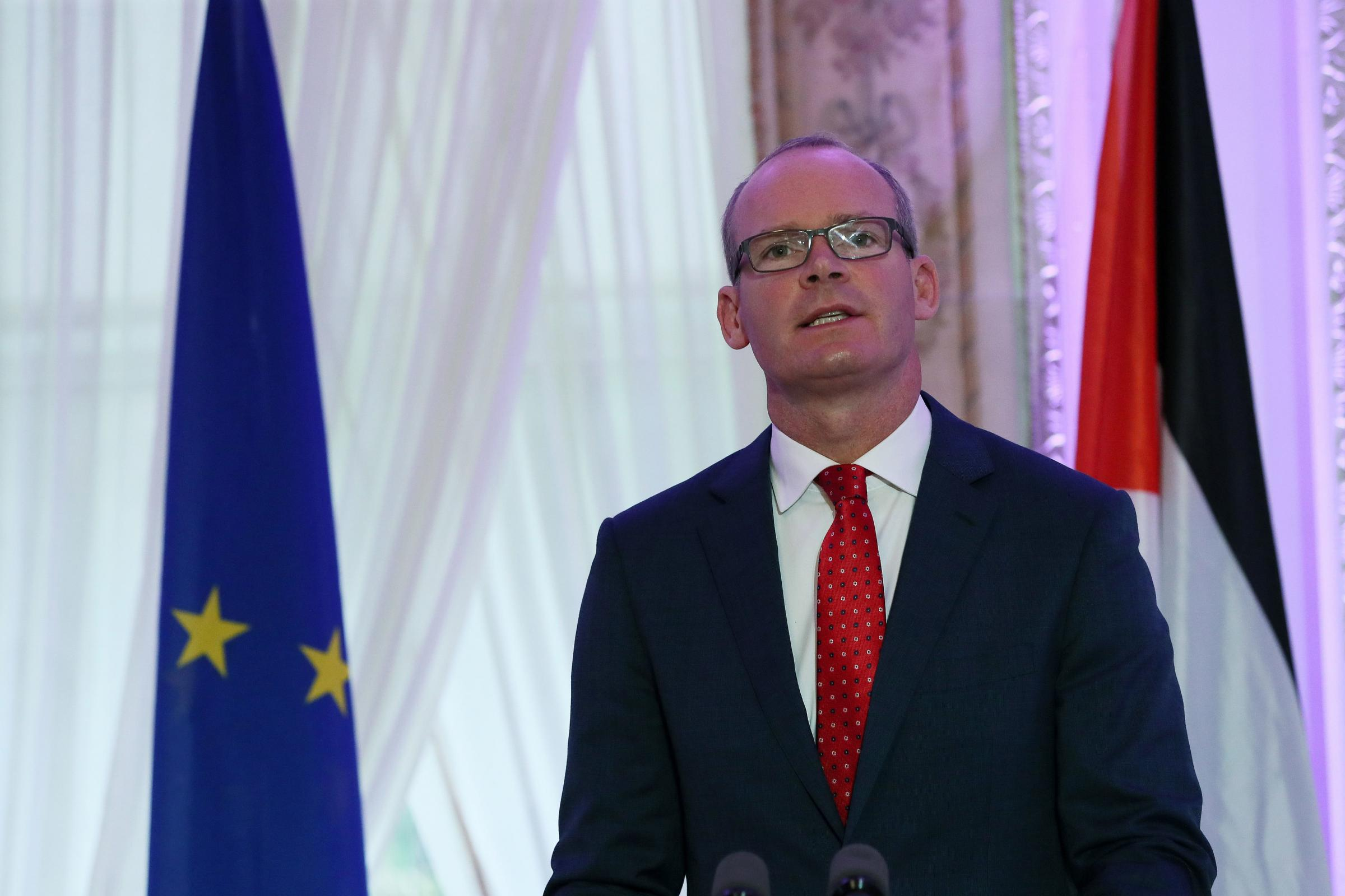 Coveney praises 'steely' Theresa May for securing 'good deal for Britain'